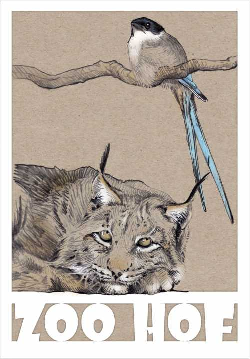 Plakat- und Postkartenentwurf für den (link: http://www.zoo-hof.de/ text: Zoo Hof)